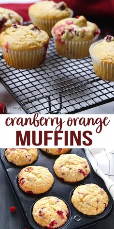 These Cranberry Orange Muffins are packed with tart cranberries and zesty orange flavour and they make the perfect sweet treat or snack! Theyre the perfect recipe for beginning bakers because theyre easy to make with simple ingredients! Cranberry Orange Muffins, Cranberry Recipes, Baking Recipes, Cookie Recipes, Dessert Recipes, Muffin Tin Recipes, Healthy Muffin Recipes, Easy No Bake Desserts, Delicious Desserts