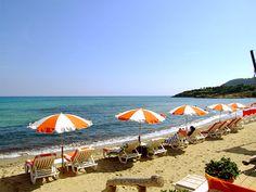St. Tropez, France... take me away!!