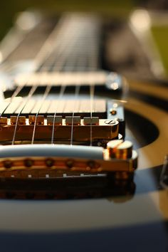 stringed instrument... great photograph