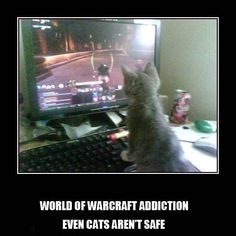 Funny World of Warcraft Memes | Last meme uploaded on March 29, 2014 15:25 UTC+1 Current database ...