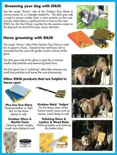 Bathing your Horse & Dogs with ENJO - if the chemical free way to care for your pets. Chemical Free Cleaning, Cleaning Chemicals, Natural Cleaning Products, Dog Grooming, Cleaning Hacks, Your Pet, Bathing, How To Remove, Horse