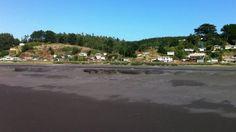 Reynox Duart de paseo por la playa, vdeo compartido en Vimeo en una calidad HD DE 720.  https://vimeo.com/channels/reynox  Seguir en Google plus: https://plus.google.com/u/0/109766334248520651976/photos