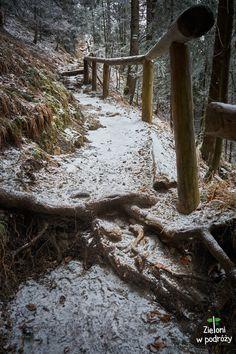 Ścieżka jakich wiele - śniegu mało i miejscami ślisko