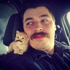 Uma parceira cujo bigode combina com o do policial.   Este policial salvou um gatinho deixado na chuva, e agora eles são uma dupla de combate ao crime