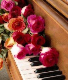 Roses, music, candlelight and the one you love. A picnic in the  livingroom while the rain falls outside. Warm inside and out with love all around. A perfect mingling of those things that stem from love. I love you. Always will even though you are far away.