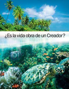 Portada del folleto ¿Es la vida obra de un Creador?