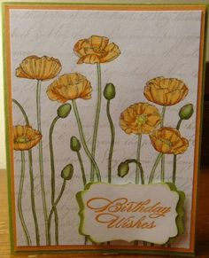 Poppy Birthday by ChelleSnow - Cards and Paper Crafts at Splitcoaststampers