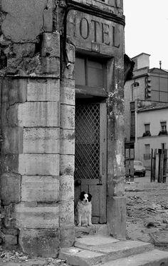 Belleville d& by Jean-Louis Penel, 1972 Paris Photography, Vintage Photography, Menilmontant Paris, Belleville Paris, Paris 1900, Beautiful Paris, Paris City, World Cities, Old London
