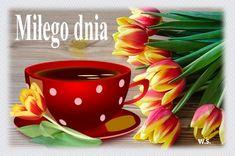 Mugs, Tableware, Dinnerware, Tumblers, Dishes, Mug, Cups