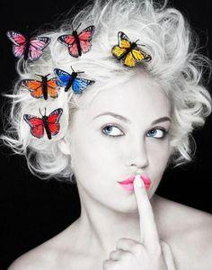 Butterflies on WHITE