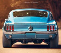 1967 Ford Mustang Fastback Rear by Dejan Marinkovic Photography Ford Mustang 1967, Ford Mustang Fastback, Ford Mustangs, Mustang Cars, Mustang Bullitt, Classic Mustang, Ford Classic Cars, Ford Mustang Wallpaper, Muscle Cars