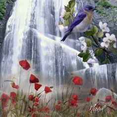صباح الوردري, remaasslan صور-جميلة-متحركه