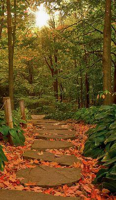 Montreal Botanical Garden in Quebec, Canada • photo: Anne Jutras on deviantart