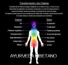El equilibrio de los Chakras (en español)