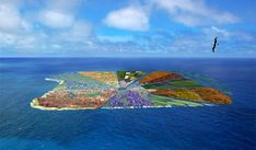 Group of architects in Netherlands come up with floating island size of Hawaii made of recycled plastic, self sustaining, farms seaweed