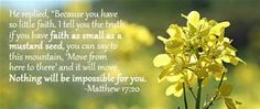 Bible Verse Image Studying... - Yahoo Image Search Results