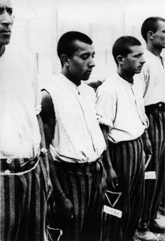 Roma (Gypsy) men stand at attention during roll call at Dachau concentration camp. Dachau was Germany's first concentration camp, opening in March 1933 just shortly after Adolf Hitler had been appointed Reich Chancellor. In the twelve years of its...