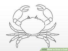 How to Draw a Crab. Are you a huge fan of sea creatures? Do you love crabs? Crabs are fun, interesting, and simple to draw. Both experienced and new artists can enjoy drawing crabs with this easy step-by-step tutorial. Draw crabs for. Pencil Art Drawings, Easy Drawings, Animal Drawings, Sea Creatures Drawing, Creature Drawings, Crab Painting, Crab Art, Sea Life Art, Desenho Tattoo