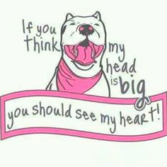 Pittie love- I want to put this on a shirt!!