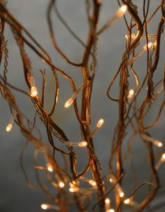 "wedding decorations-Lighted Natural Curly  Willow Branches 39"" Gold LED Plug In  (5 branches)   $9.99"