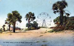 The Ferris Wheel at Isle of Palms, Charleston, S.C.