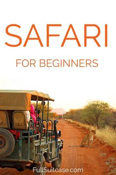 First-timers' tips for a safari in Africa – Creative Travel Advice, Travel Guides, Travel Tips, Travel Goals, Africa Destinations, Travel Destinations, Holiday Destinations, All Family, Family Travel