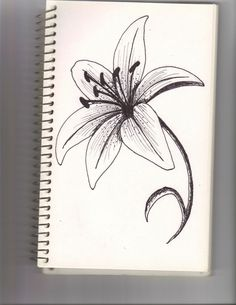 45 Beautiful Flower Drawings and Realistic Color Pencil Drawings     Find this Pin and more on  Embroidery Flowers by Kay Kutchenriter
