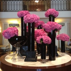 Pink hydrangeas represent grace and acceptance. But do not be fooled; hydrangeas don't always accept other flowers. For instance, never mix calla lilies with hydrangeas because lilies secrete a fluid that kills hydrangeas.