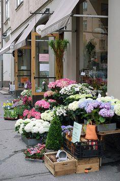 Cosy home blog: kukkakauppa-reine