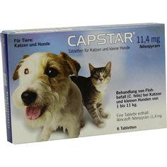 CAPSTAR 11,4 mg Tabletten für Katzen-kleine Hunde:   Packungsinhalt: 6 St Tabletten PZN: 01276359 Hersteller: Elanco Deutschland GmbH…