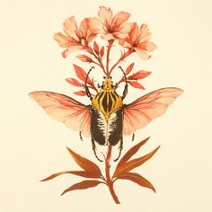 Among the most toxic of all ornamental garden plants, oleander is poisonous to most mammals in all its parts.