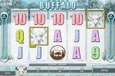 Buffalo free slots