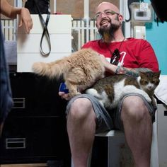 Jackson Galaxy with some catstars