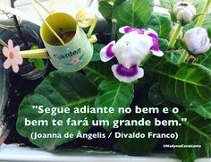 """""""Segue adiante no bem e o bem te fará um grande bem."""" (Joanna de Ângelis / Divaldo Franco)"""