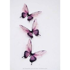Creative Butterfly Decor ❤ liked on Polyvore featuring home, home decor and butterfly home decor