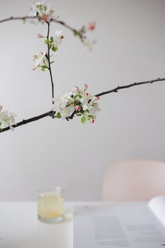 Save these tips to rejuvenate your home with flowers.
