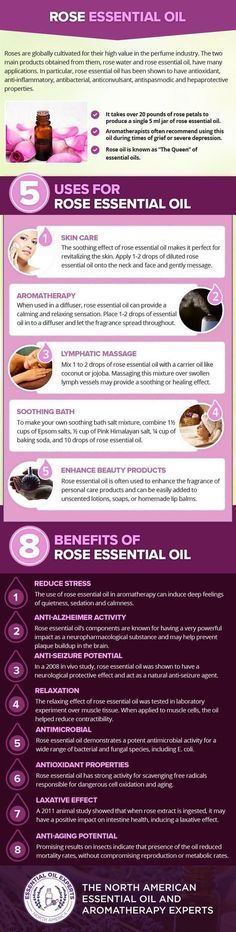 Rose Essential Oil Uses & Benefits