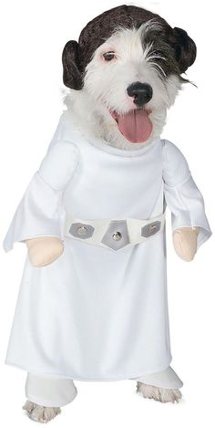 (http://www.notforpussys.com/star-wars-princess-leia-dog-costume-forcefriday/)