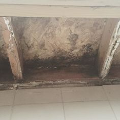 Mold Growth Behind Your Walls #roc #rochesterny #mold #moldremediation #moldremoval