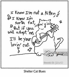 'I know I'm not a kitten, I know I'm sorta fat, But if you will adopt me, I'll be your lovin' cat.' Caption:Shelter Cat Blues