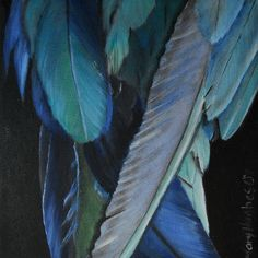 """Feathers"" fineartamerica.co...  Artist Mary Hughes"
