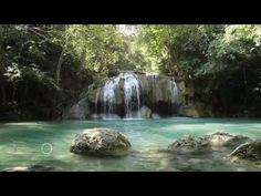 Relaxation - Cohérence cardiaque - Pranayama -  Respirez en pleine conscience - ZEN 6:25