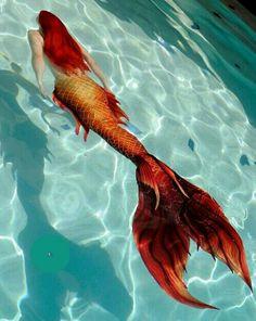 Meerjungfrau im Goldfisch-Style. Das kannst du auch: www. Fantasy Creatures, Mythical Creatures, Sea Creatures, Real Mermaids, Mermaids And Mermen, Fantasy Mermaids, Silicone Mermaid Tails, Mermaid Drawings, Mermaid Paintings