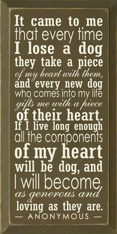 Discover and share Dog Quotes About Unconditional Love. Explore our collection of motivational and famous quotes by authors you know and love. Baby Dogs, Dogs And Puppies, Doggies, Dachshunds, Beagles, Rottweilers, Labradors, Aussies, Schnauzers