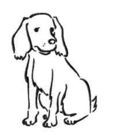 Outline Drawings of Dogs | Dog Outline Drawing | Cartoons ...