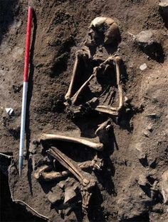 Viking skeleton found in WalesA skeleton of a Viking has been discovered by archaeologists at Llanbedrgoch, Anglesey. Scientists from Amgueddfa Cymru – National Museum Wales, who made the discovery believe it will shed new light on the interaction between Celtic, Anglo-Saxon and Viking-age worlds operating around the Irish Sea.