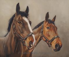 Ted and Trixie by Sarah Eden - Double horse portrait commissioned for a birthday surprise I was photographing this pair during storm Doristhey we. Horse Portrait, Oil Portrait, Paintings I Love, Horse Paintings, Equine Art, Horse Art, The Incredibles, Horses, Pets