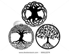 Google Image Result for http://thumb10.shutterstock.com/display_pic_with_logo/331366/331366,1291609704,2/stock-vector-celtic-tree-of-life-vector-designs-66612274.jpg
