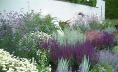 Like the purple salvia-looking spikes, like the sage-colored plant behind them, like the white daisy mounds,  Not crazy about the spiky plants in the very front.  From taylortripp.co.uk.