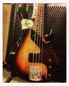 "Gibson ""Victory Bass"" Bass Guitars, Electric, Music Instruments, Beauty, Beleza, Musical Instruments, Cosmetology"